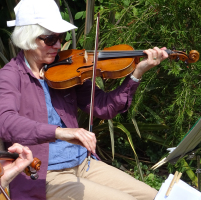 Playing in a garden – fiddle